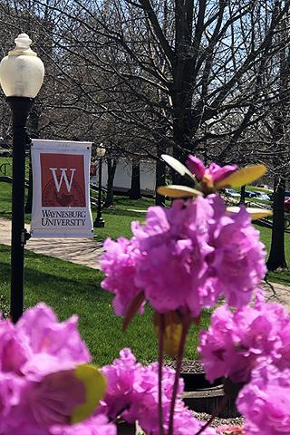 Spring on Campus