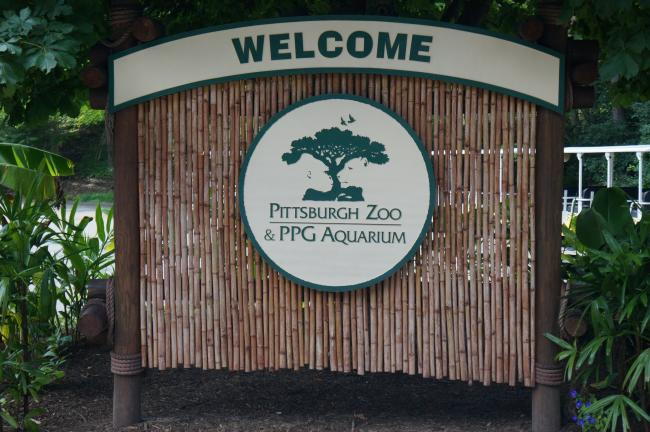 Trip to Pittsburgh Zoo